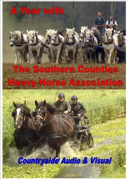 A Year with the Southern Counties Heavy Horse Association